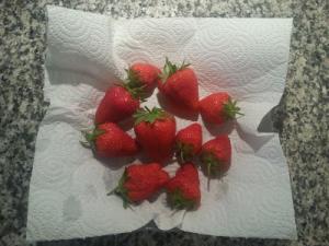 Erdbeeren verteilt aufbewahren
